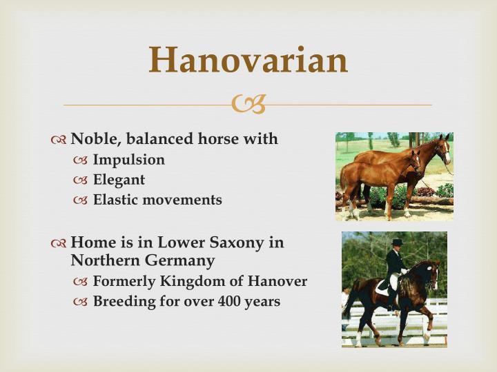 Hanovarian
