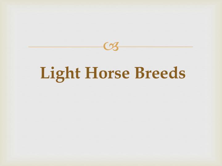 Light Horse Breeds
