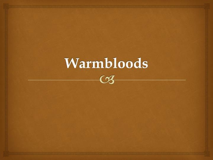 Warmbloods