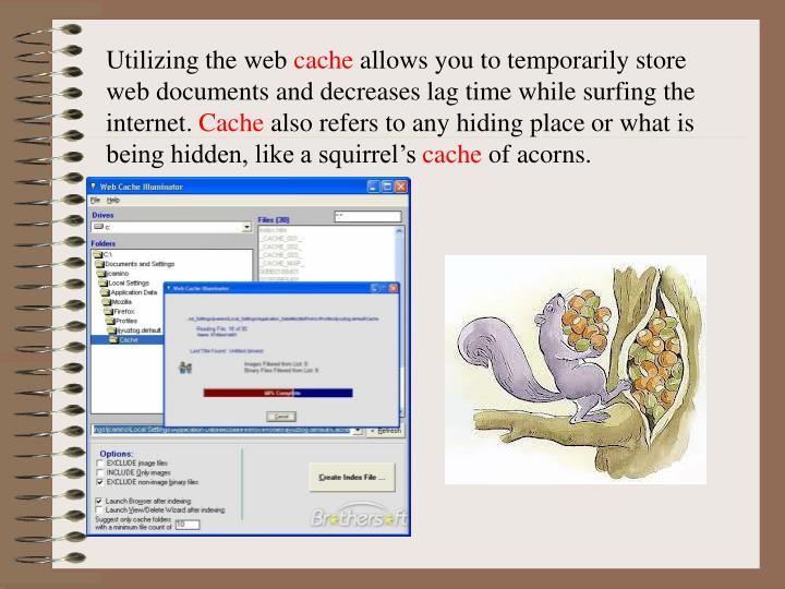 Utilizing the web