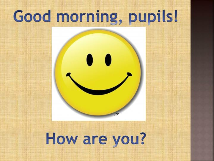 Good morning, pupils!