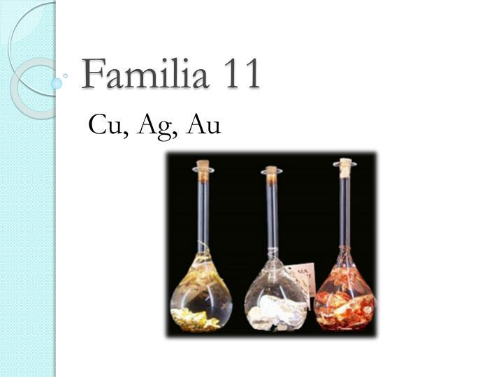 Familia 11