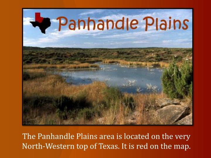The Panhandle Plains area is located on the very North-Western top of Texas. It is red on the map.