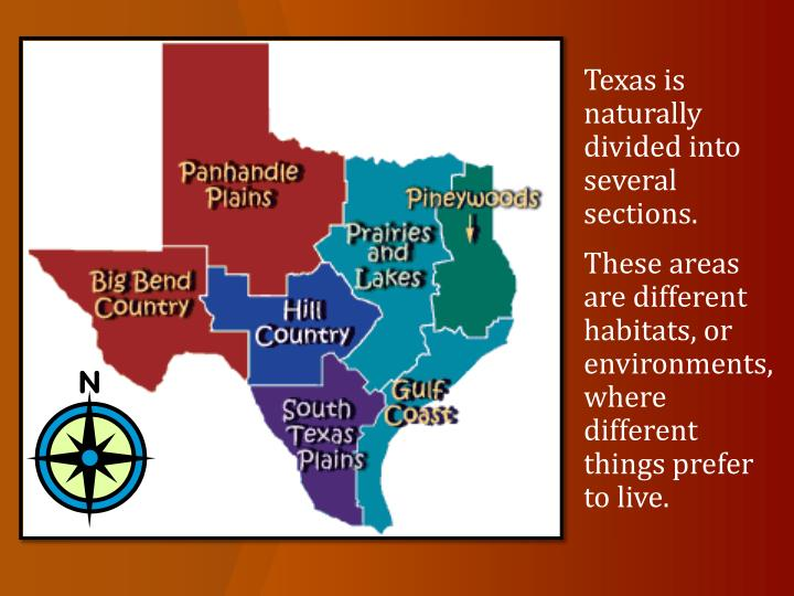 Texas is naturally divided into several sections.