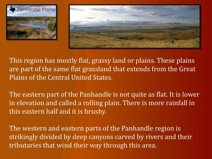 This region has mostly flat, grassy land or plains. These plains are part of the same flat grassland that extends from the Great Plains of the Central United States.
