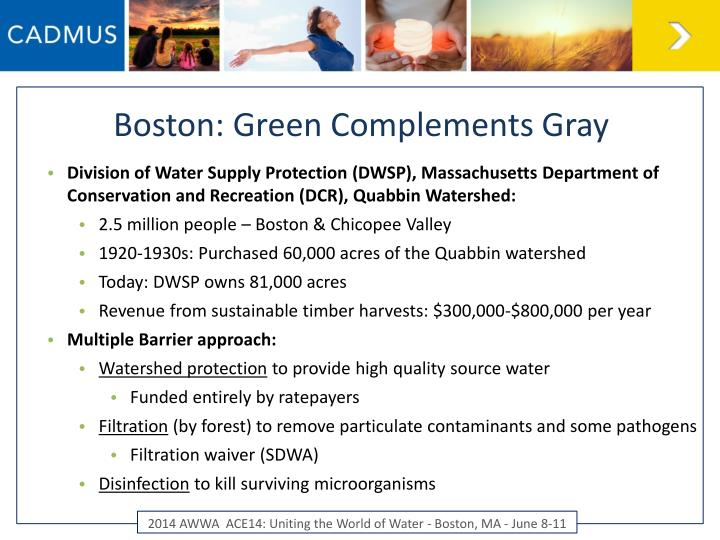 Boston: Green Complements Gray