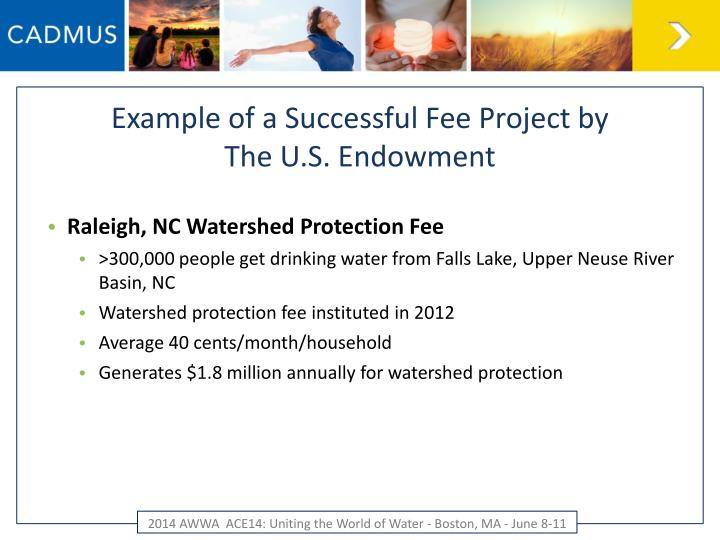 Example of a Successful Fee Project by