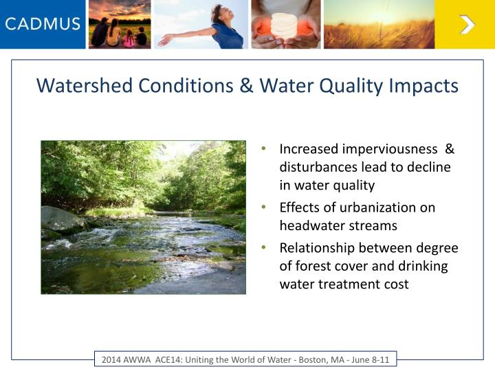 Watershed conditions water quality impacts