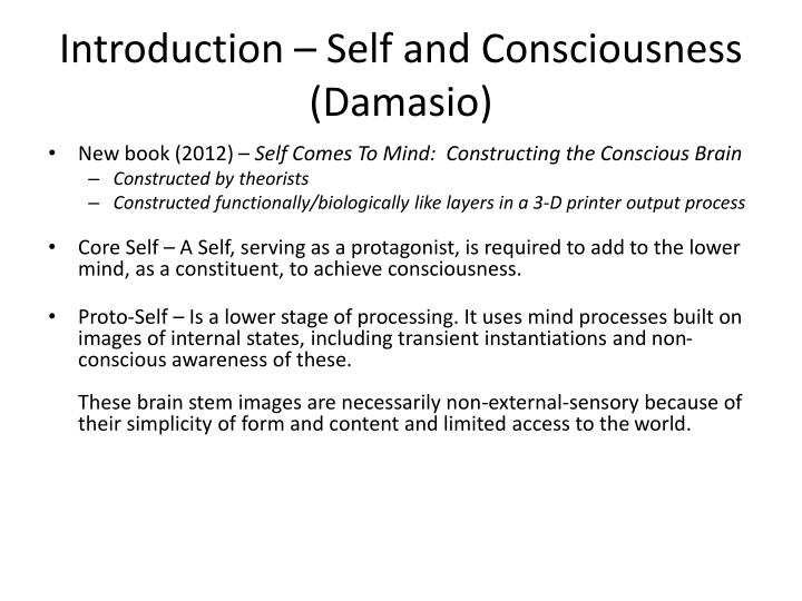 Introduction – Self and Consciousness (