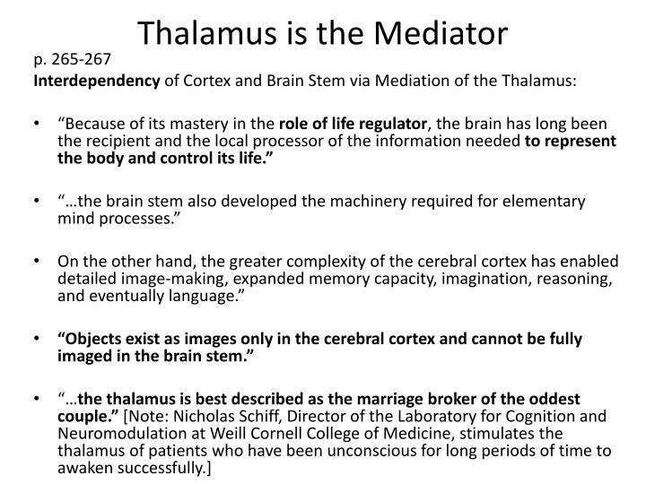 Thalamus is the Mediator
