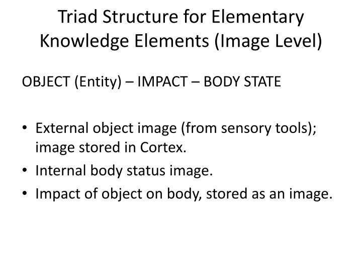 Triad Structure for Elementary Knowledge Elements (Image Level)