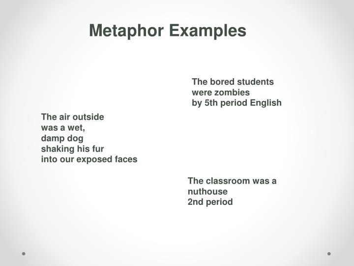 Metaphor Examples