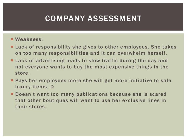 Company Assessment