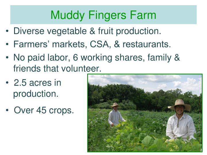 Muddy Fingers Farm