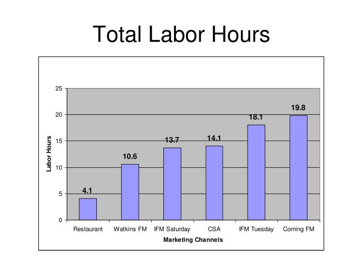Total Labor Hours