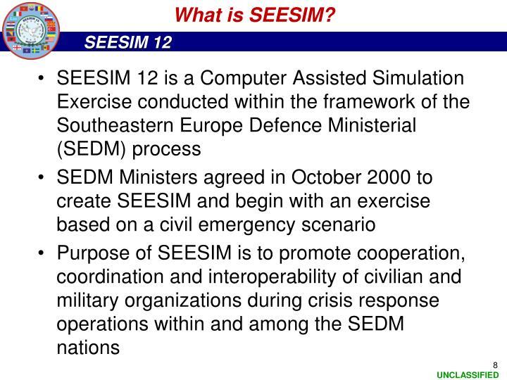 What is SEESIM?