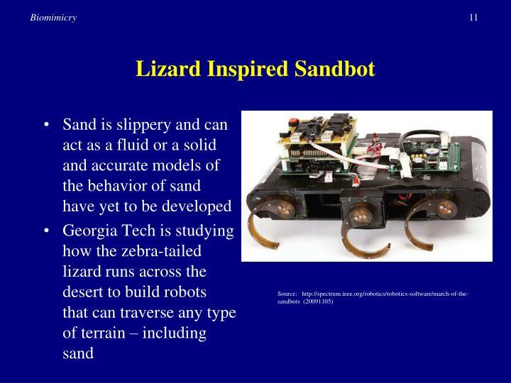 Lizard Inspired Sandbot