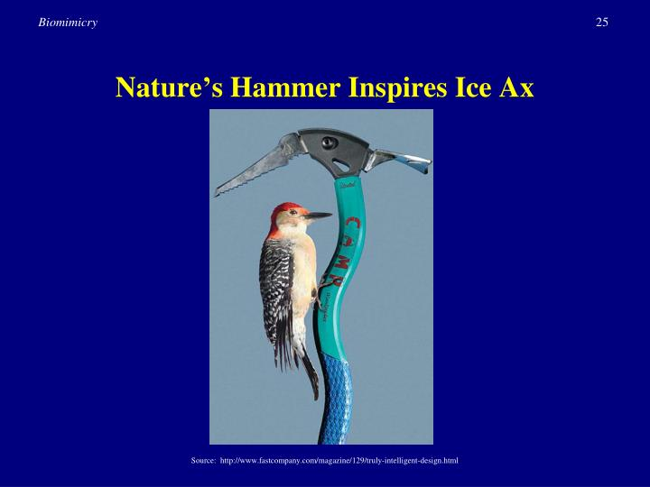 Nature's Hammer Inspires Ice Ax