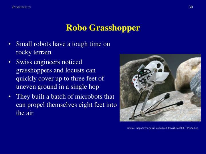 Robo Grasshopper