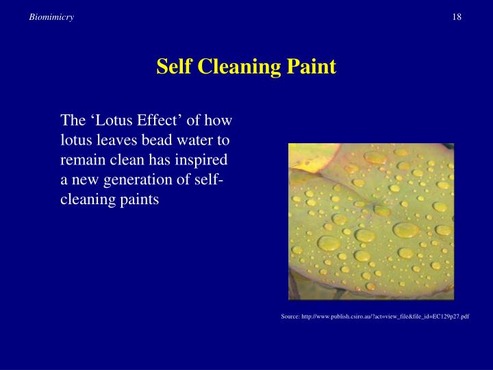 Self Cleaning Paint