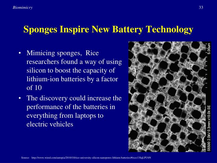 Sponges Inspire New Battery Technology