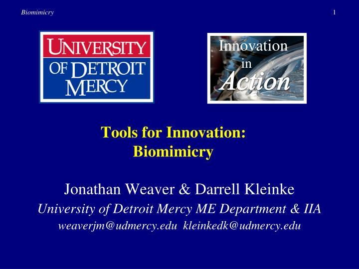 Tools for innovation biomimicry