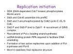 replication initiation2
