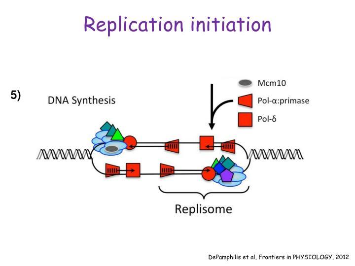 Replication initiation