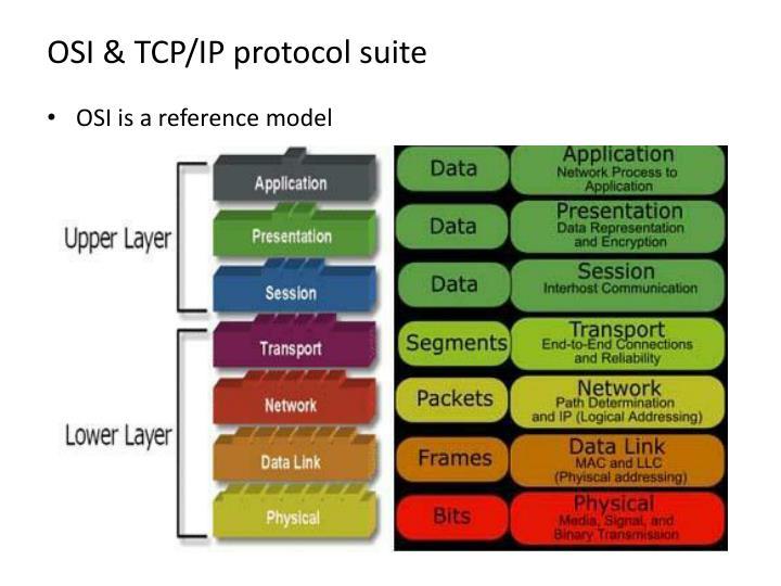 OSI & TCP/IP protocol suite