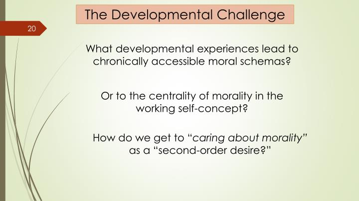 The Developmental Challenge