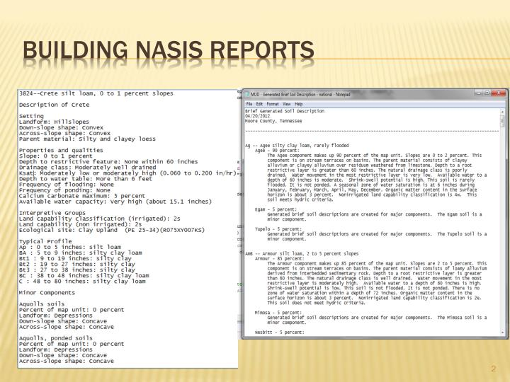 Building nasis reports