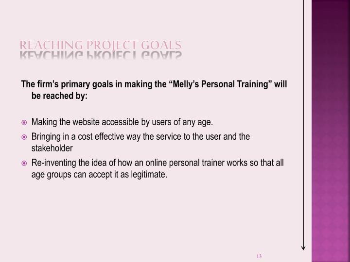 Reaching Project Goals