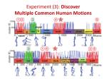 experiment 3 discover multiple common human motions1