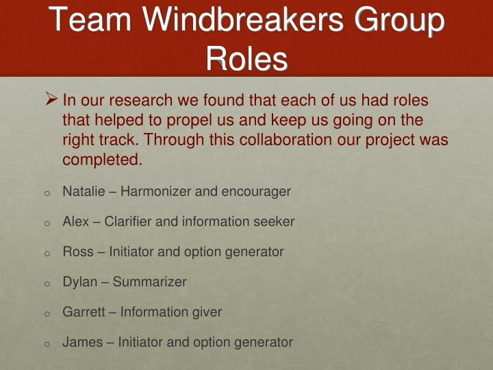Team Windbreakers Group Roles