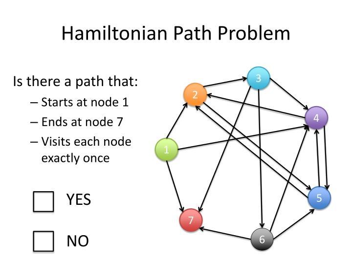 Hamiltonian Path Problem