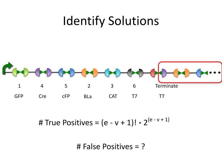 Identify Solutions