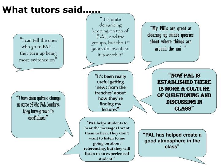 What tutors said……