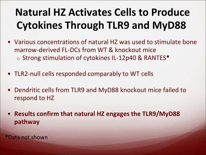 Natural HZ Activates Cells to Produce Cytokines