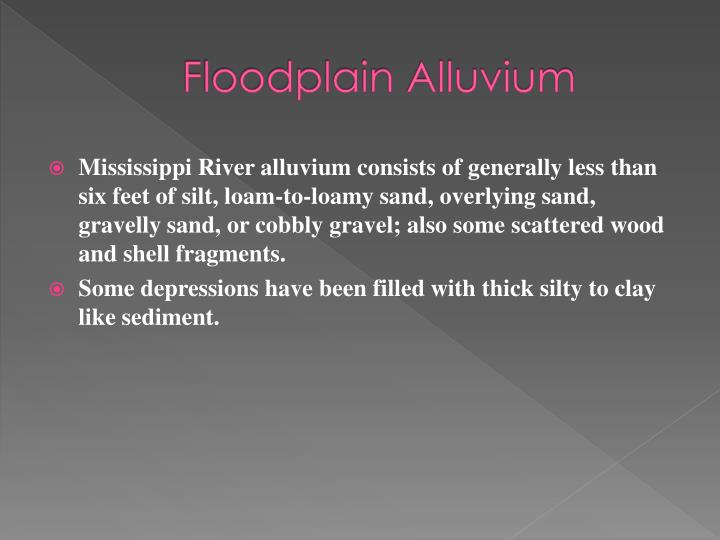 Floodplain Alluvium