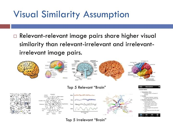 Visual Similarity Assumption
