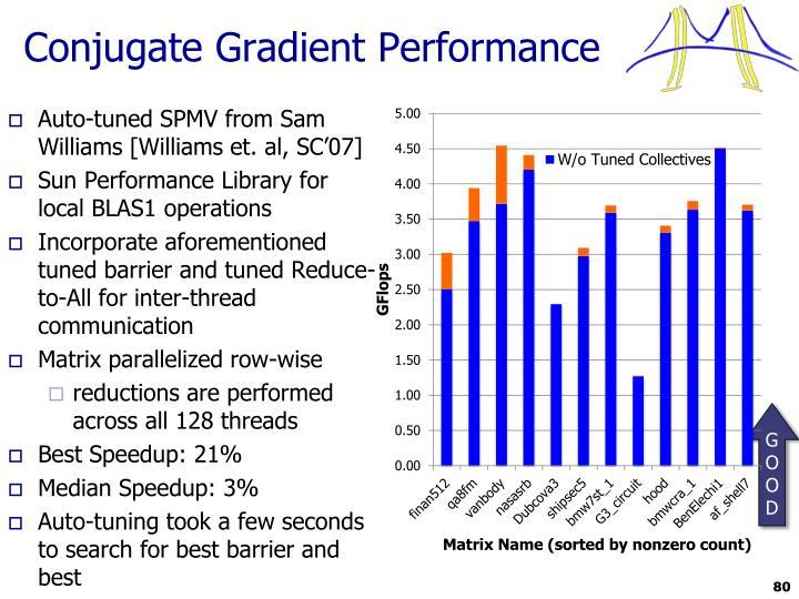Conjugate Gradient Performance