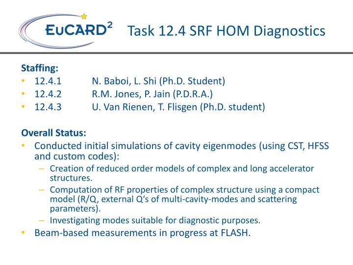 Task 12.4 SRF HOM Diagnostics