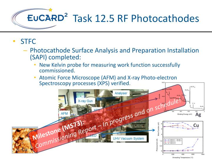 Task 12.5 RF Photocathodes