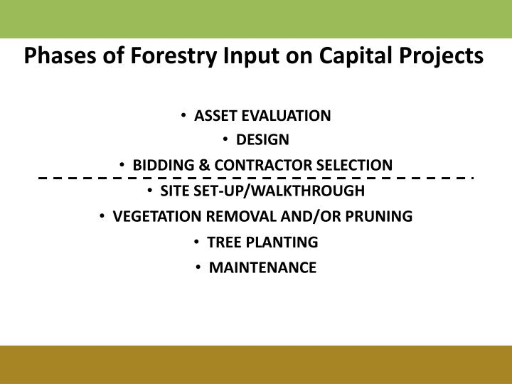 Phases of Forestry Input on Capital Projects