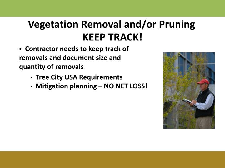 Vegetation Removal and/or Pruning