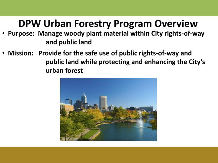 DPW Urban Forestry Program Overview