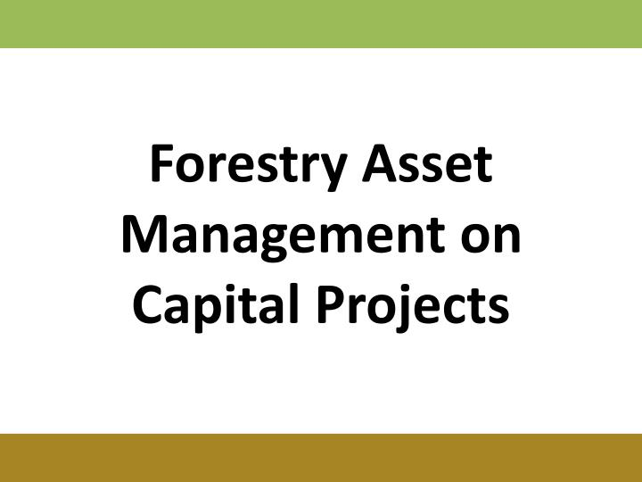 Forestry Asset Management on Capital Projects