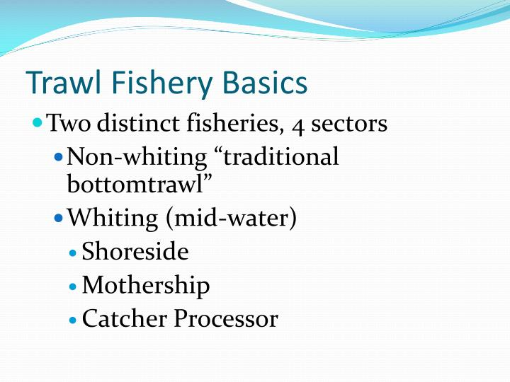 Trawl Fishery Basics