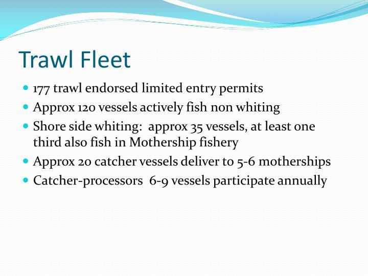 Trawl Fleet