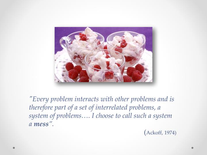 """Every problem interacts with other problems and is therefore part of a set of interrelated problems, a system of problems…. I choose to call such a system a"